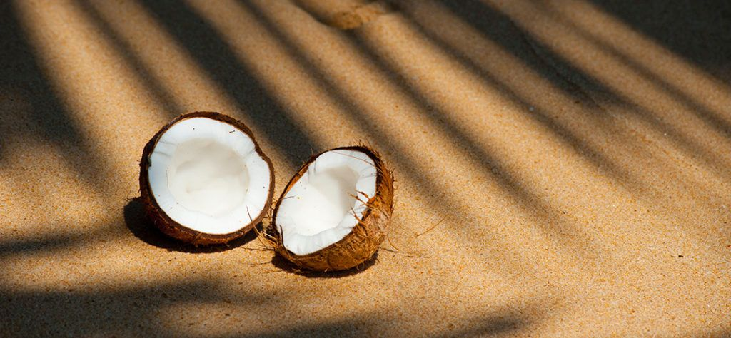 coconuts, summer fruit