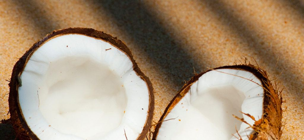 coconut as part of the list of l'anza's ingredients, natural element in their complexes
