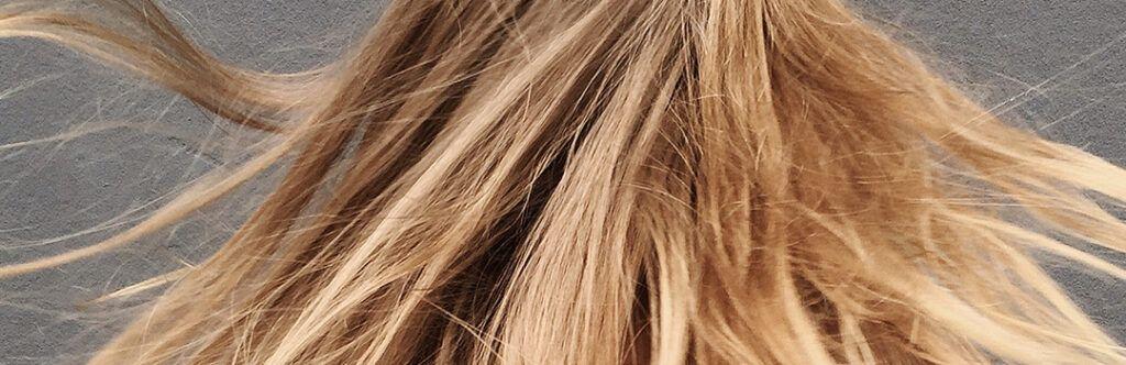 blonde dehydrated hair